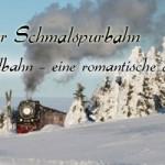 Die Harzer Schmalspurbahnen Teil2 – Die Selketalbahn – eine romantische Harzreise
