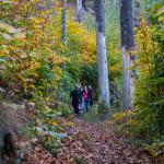 Bericht von Abenteuer Leben über den Harz Stadt, Land, Fun: Das kleinste Königreich der Welt