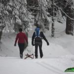 Wintersport am 15.01.2016 in Schierke und Umgebung