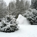 Der Winter ist zurück